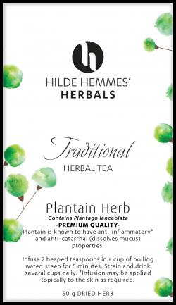 Plantain Herb