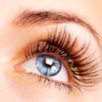 Eye Function